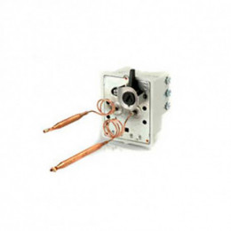 Thermostat Bulbe 2 Sondes Oem Compatible Multi-Marques